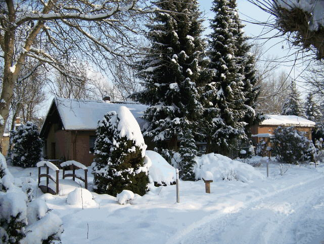 winter_vorm_haus